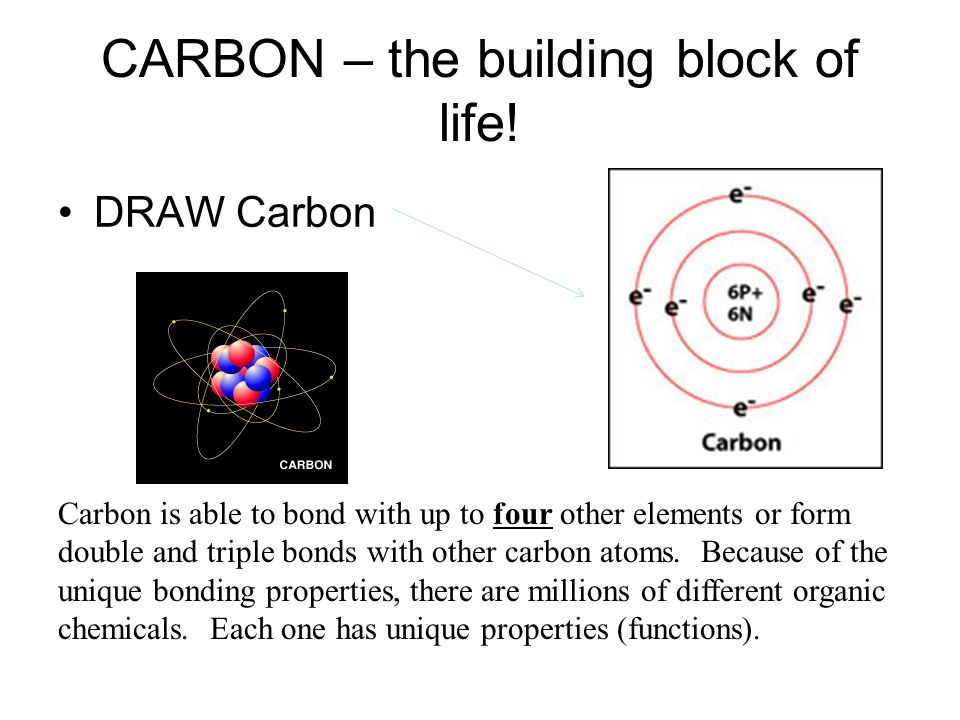 CARBON – the building block of life!