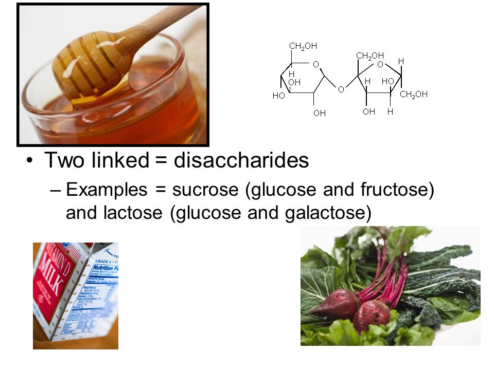 Two linked = disaccharides