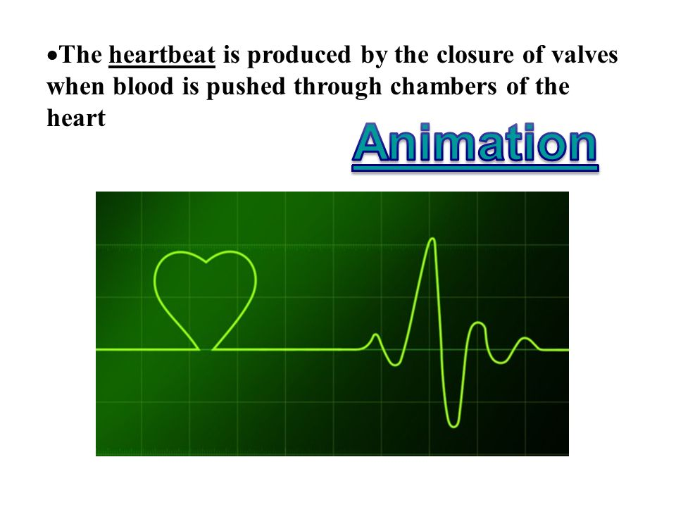 The heartbeat is produced by the closure of valves when blood is pushed through chambers of the heart