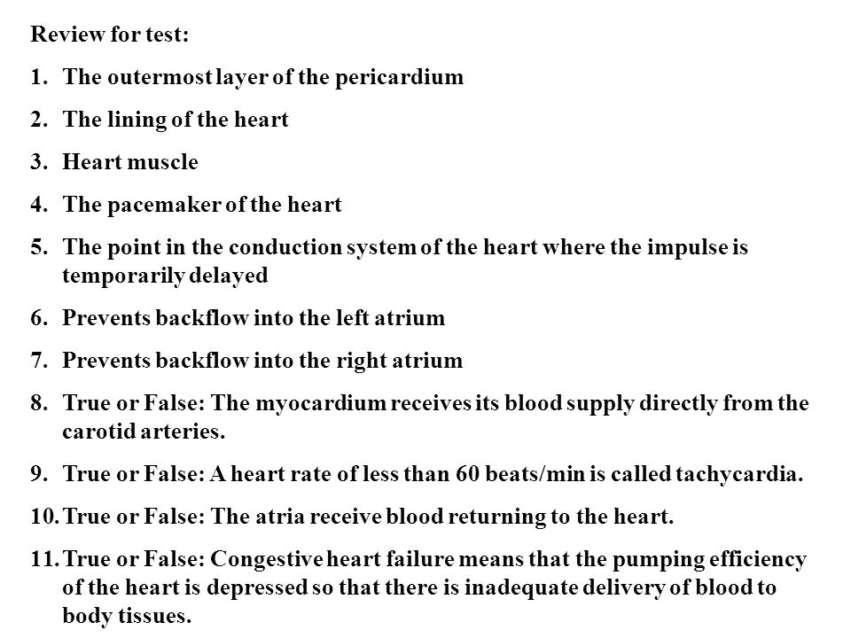 Review for test: The outermost layer of the pericardium. The lining of the heart. Heart muscle. The pacemaker of the heart.