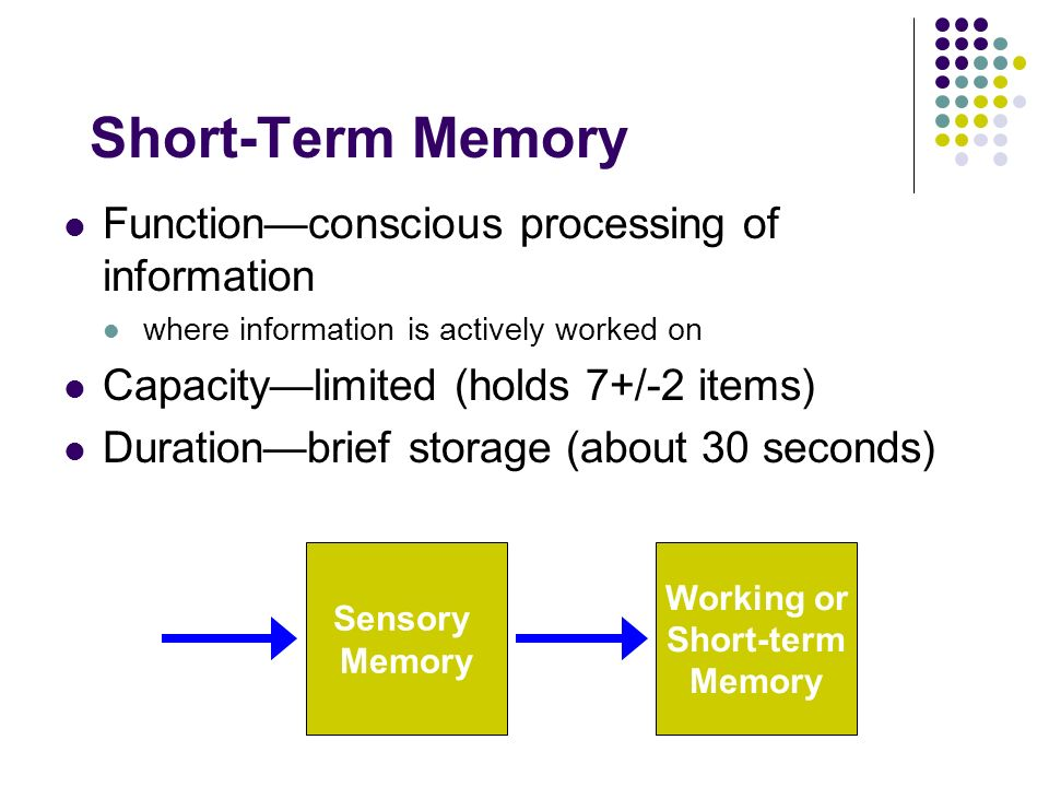 capacity duration of short term memory George miller was a pioneer in the field of cognitive psychology learn more about george miller, his theory on short-term memory and his.