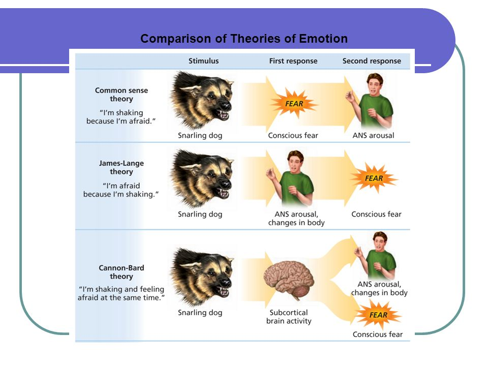 major motivational and emotional response theories Theories of emotion the major theories of motivation can be grouped into three main categories: physiological, neurological, and cognitive physiological theories suggest that responses within the body are responsible for emotions neurological theories propose that activity within the brain leads to emotional responses.