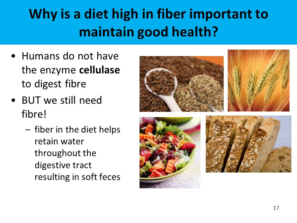 the significance of fiber foods to human health You might know about many nutritious whole foods, which are rich in healthy nutrients but, do you know about the significance of a few super foods that help you heal.