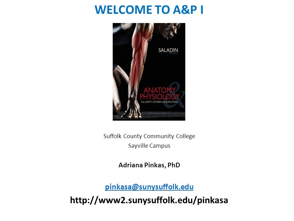 Suffolk County Community College - ppt video online download