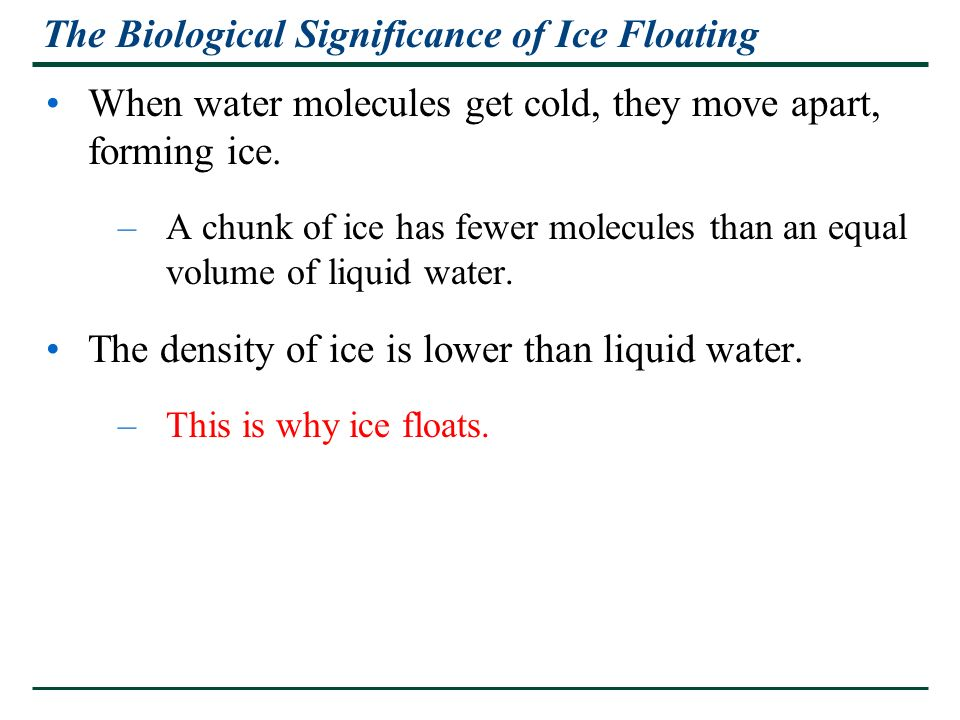 The Biological Significance of Ice Floating