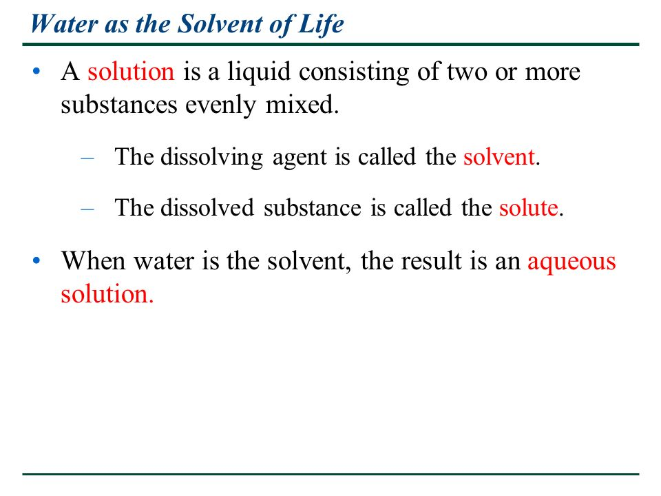 Water as the Solvent of Life