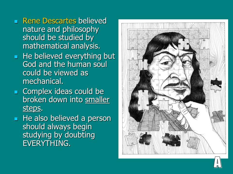 importance of philosophy essay