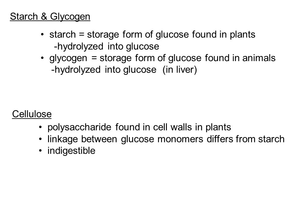 Storage Form Of Glucose - stevejobssecretsoflife.org