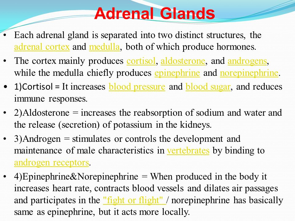 What Is An Endocrine Gland Ppt Video Online Download