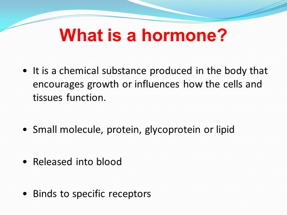 what is an endocrine gland? - ppt video online download, Human Body