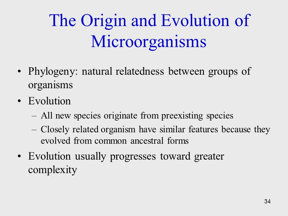 Foundations In Microbiology Seventh Edition Ppt Video
