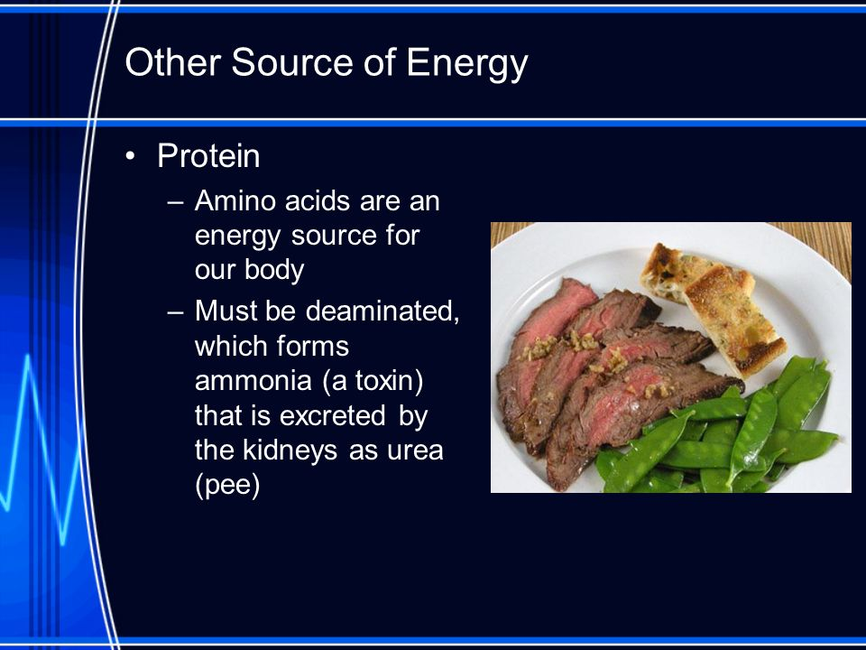 Other Source of Energy Protein