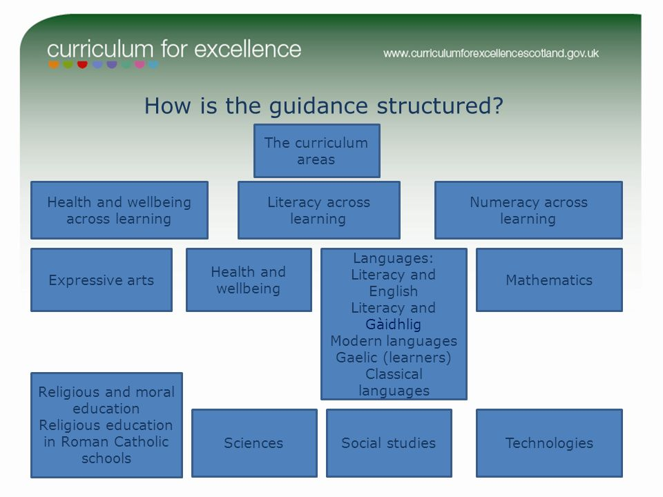How is the guidance structured