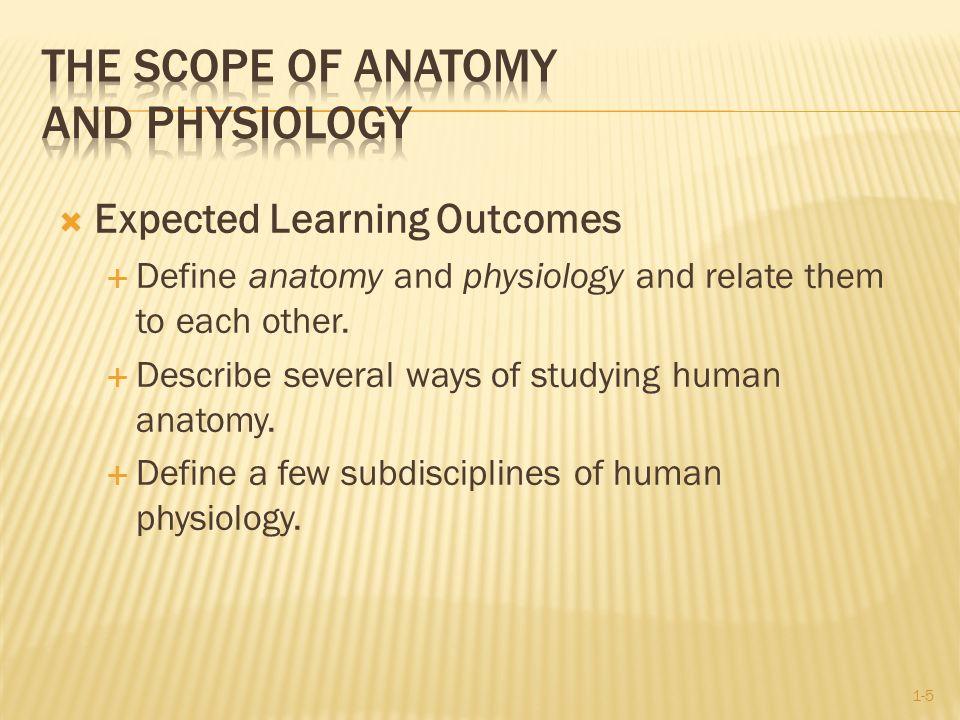 Erfreut Scope Of Anatomy And Physiology Fotos - Menschliche Anatomie ...