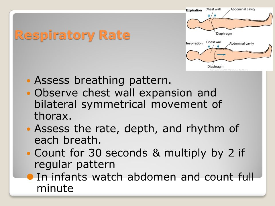Medical Definition of Respiratory rate