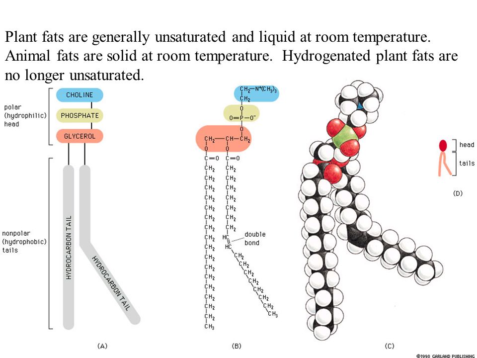 Which Liquid Is More Viscous At Room Temperature