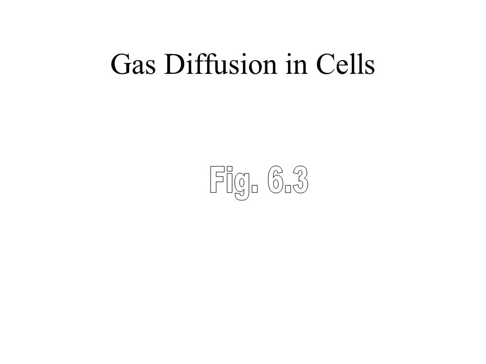 Gas Diffusion in Cells Fig. 6.3