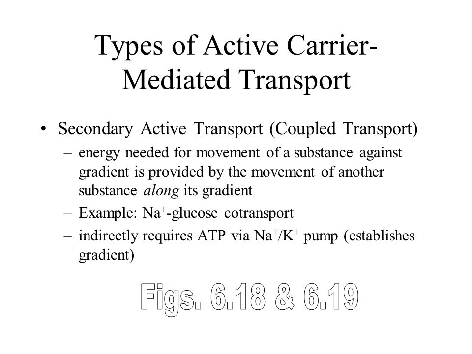 Types of Active Carrier-Mediated Transport