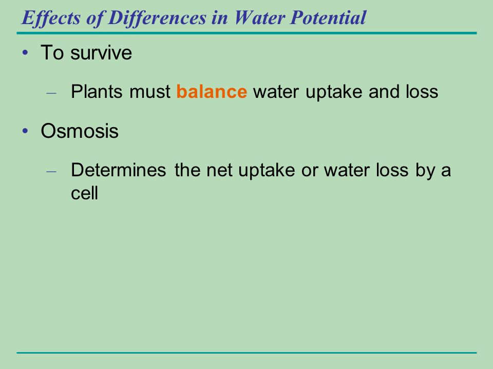 the effect of osmosis on differences Observing the effects of osmosis on living organisms animals  cess called  osmosis  in this activity, you will explore one of the main reasons for these differ .