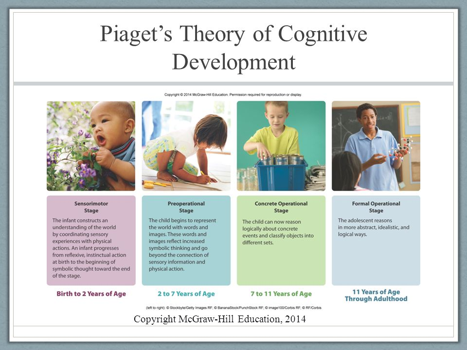 Stage Theory of Cognitive Development (Piaget)