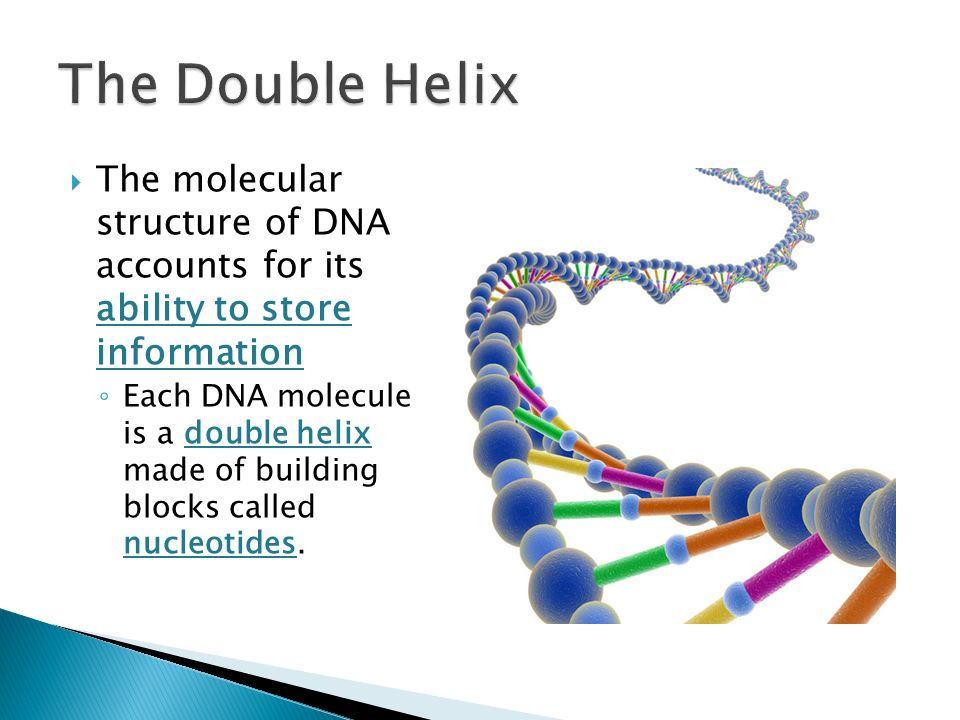 Molecular Structure of Nucleic Acids: A Structure for Deoxyribose Nucleic Acid