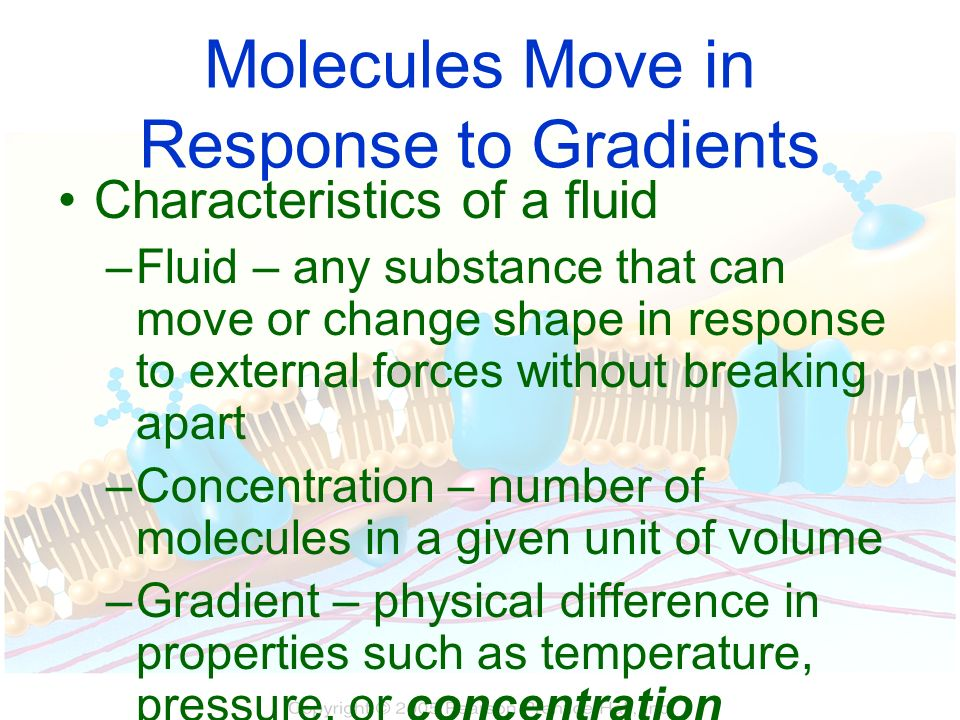 Molecules Move in Response to Gradients
