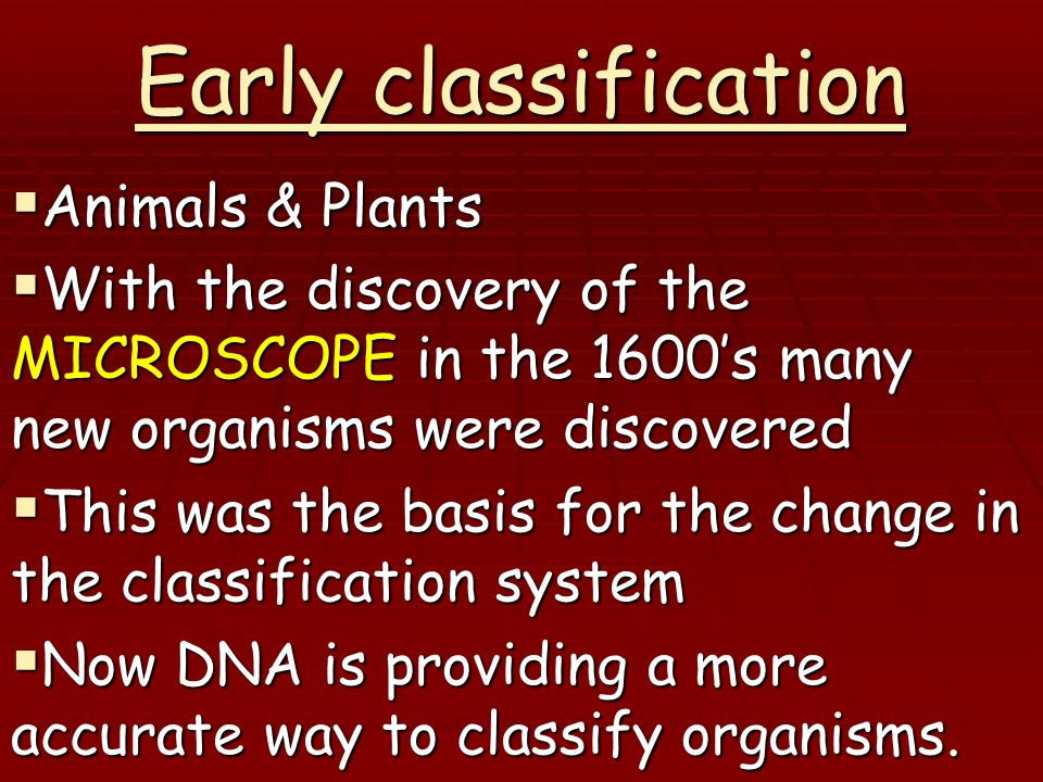 Early classification Animals & Plants