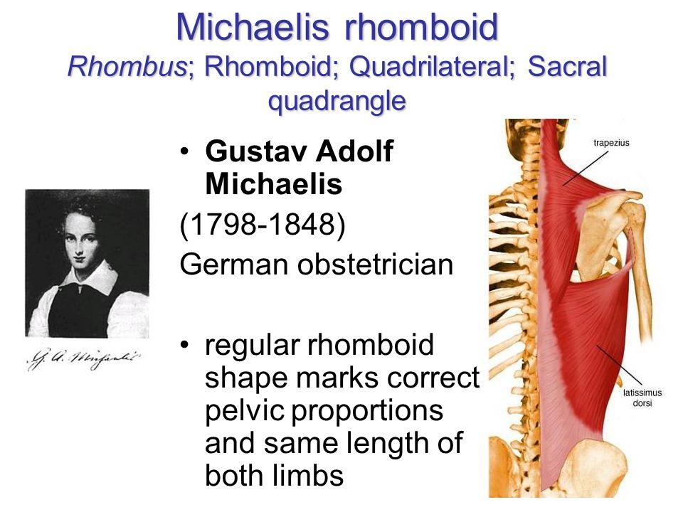Michaelis rhomboid Rhombus; Rhomboid; Quadrilateral; Sacral quadrangle
