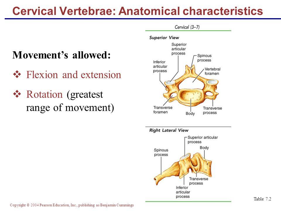 anterior body listhesis vertebral