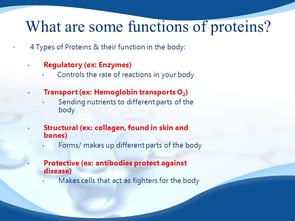 What are some functions of proteins