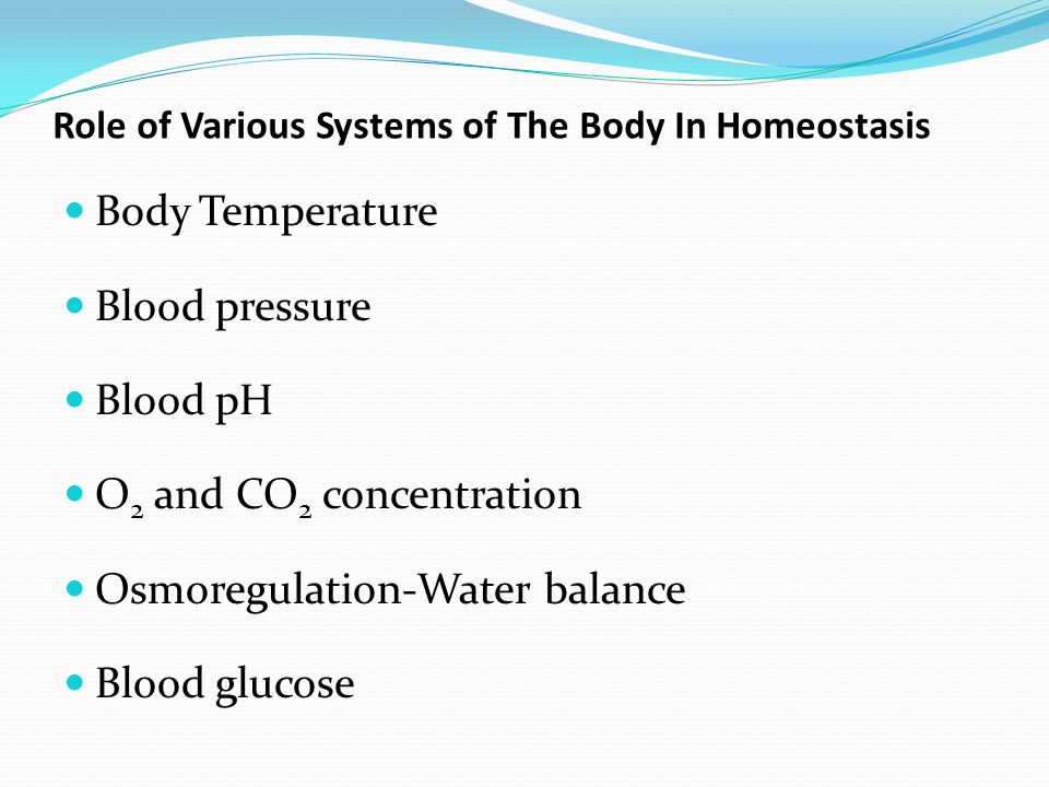 Homeostasis of the body