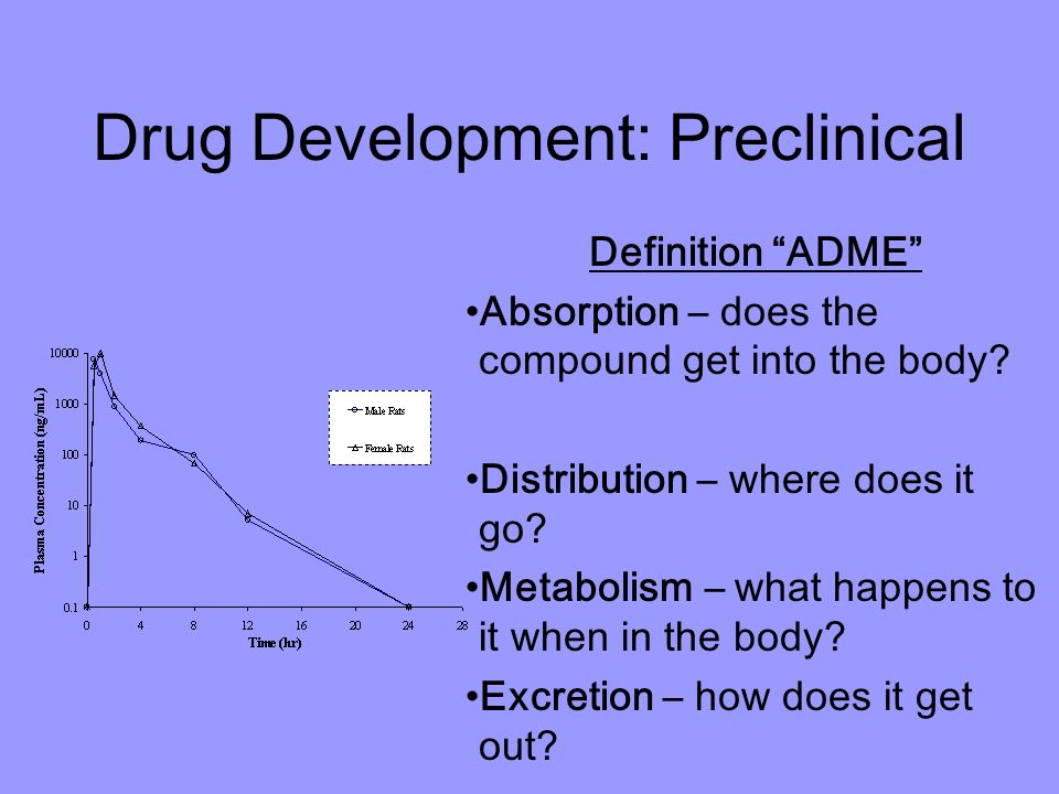 Preclinical phase of drug study