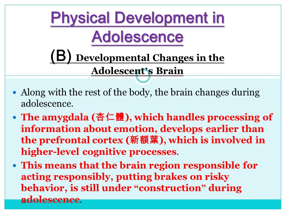 growth of cognitive thinking during adolescence It was thought at one time that the foundation of the brain's architecture was laid   as the prefrontal cortex matures, teenagers can reason better, develop more   giedd hypothesizes that the growth in gray matter followed by the pruning of.