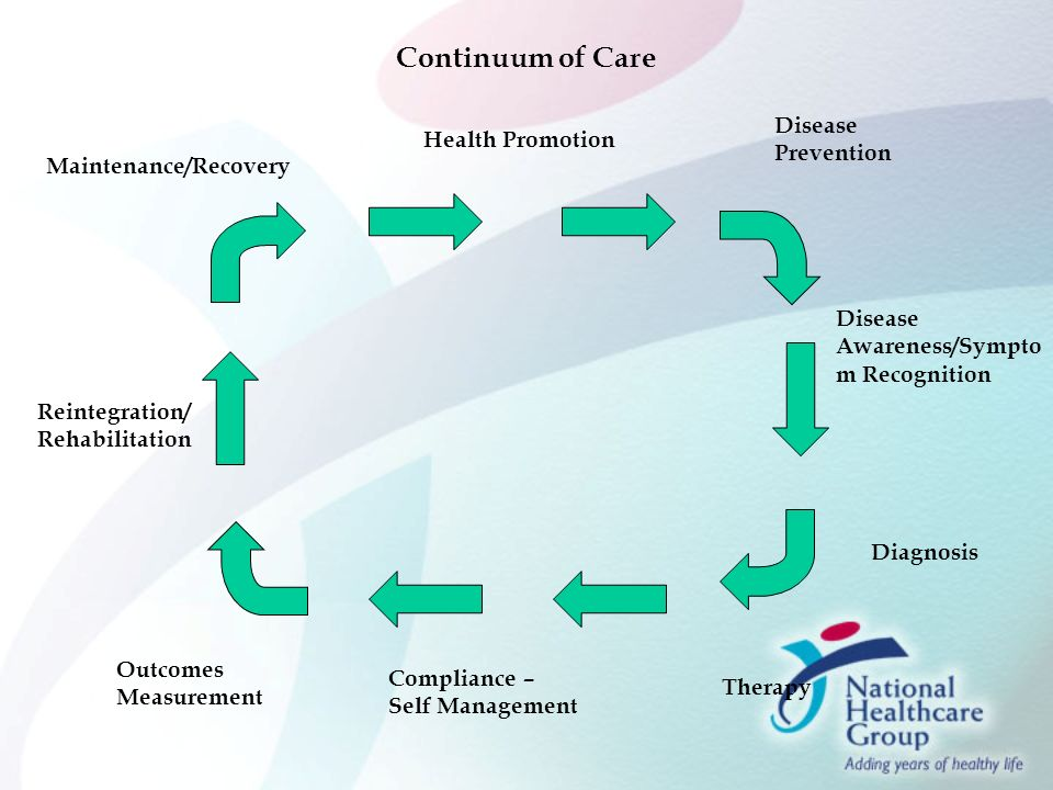 Disease Management Singapore Style Ppt Video Online