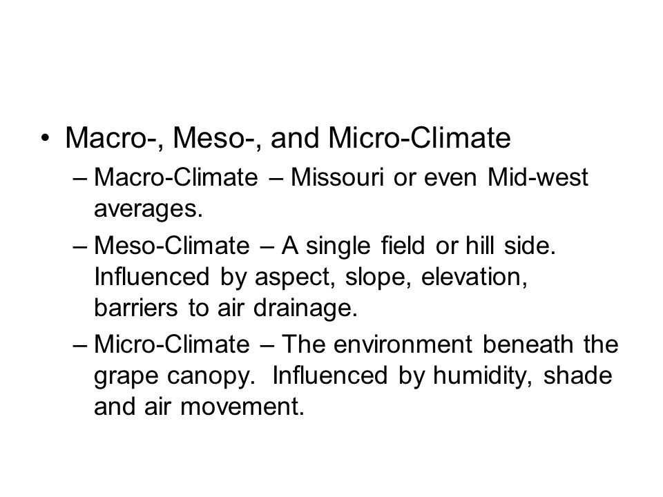 macro and micro climate pdf