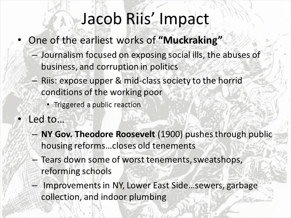 """the social impact of the life of theodore roosevelt With the assassination of president william mckinley, theodore roosevelt """"the life of strenuous endeavor"""" was a must for those around him."""