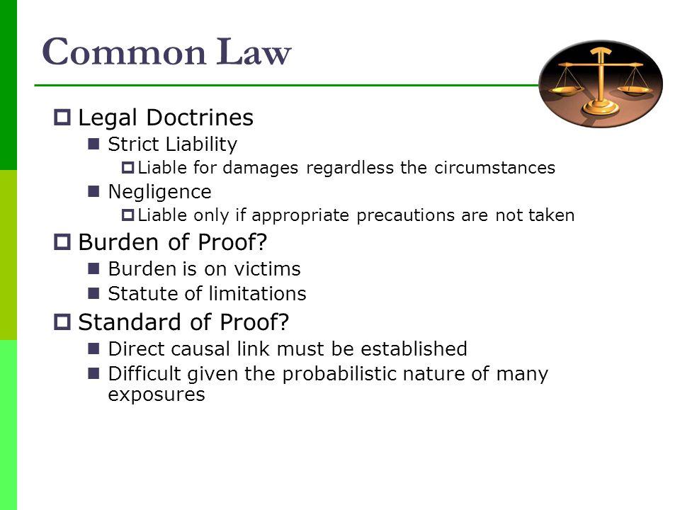 Common Law Legal Doctrines Burden of Proof Standard of Proof