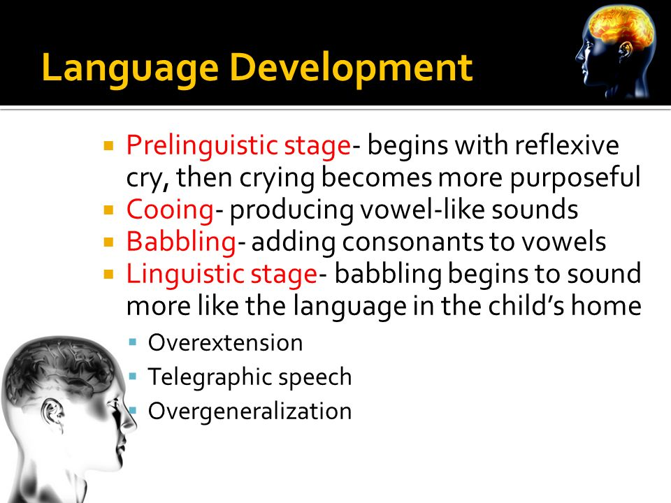 Language And Thought  Ppt Download