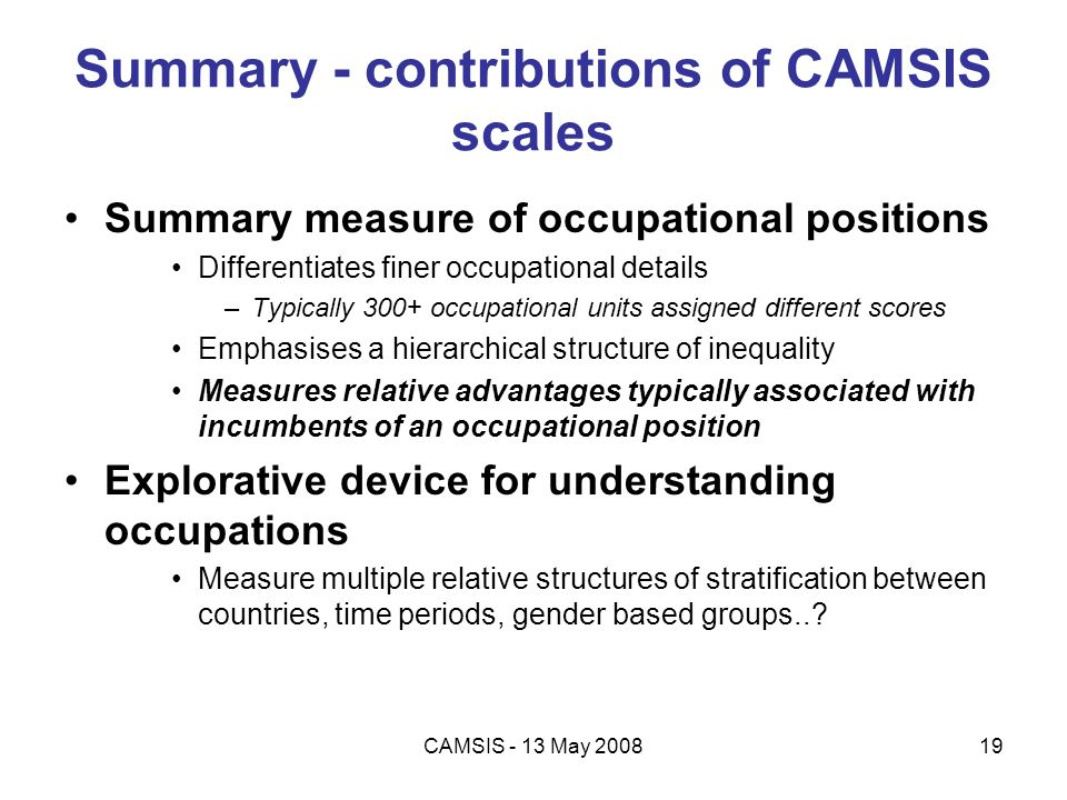 Summary - contributions of CAMSIS scales