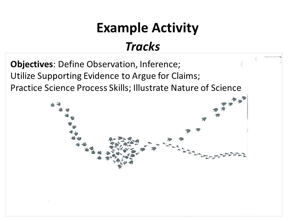 Example Activity Tracks