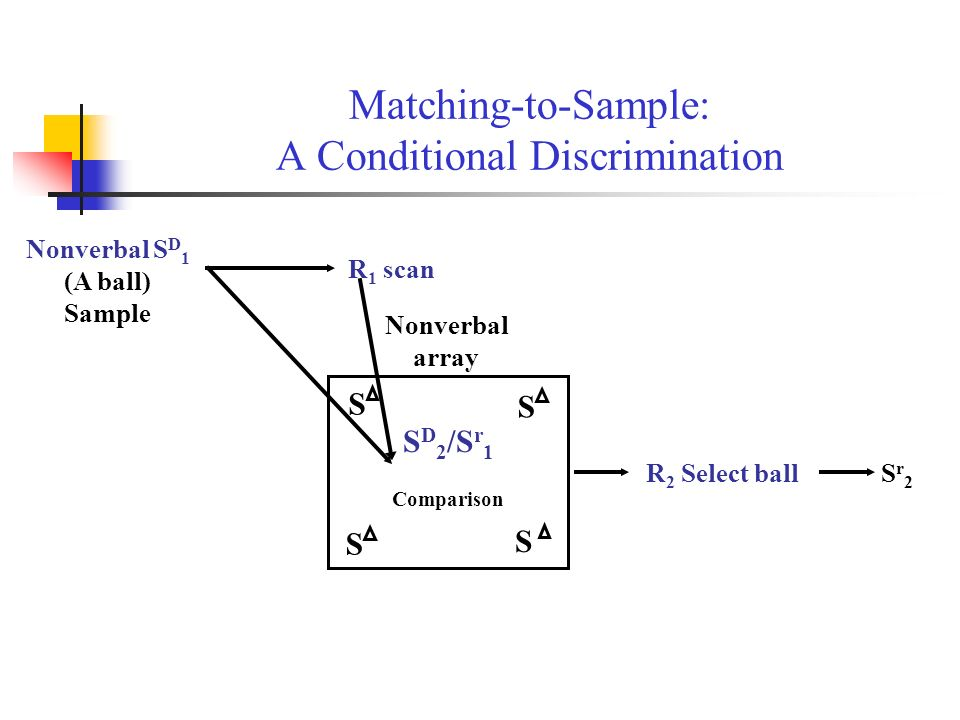 Matching-to-Sample: A Conditional Discrimination