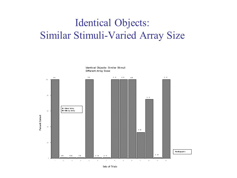 Identical Objects: Similar Stimuli-Varied Array Size