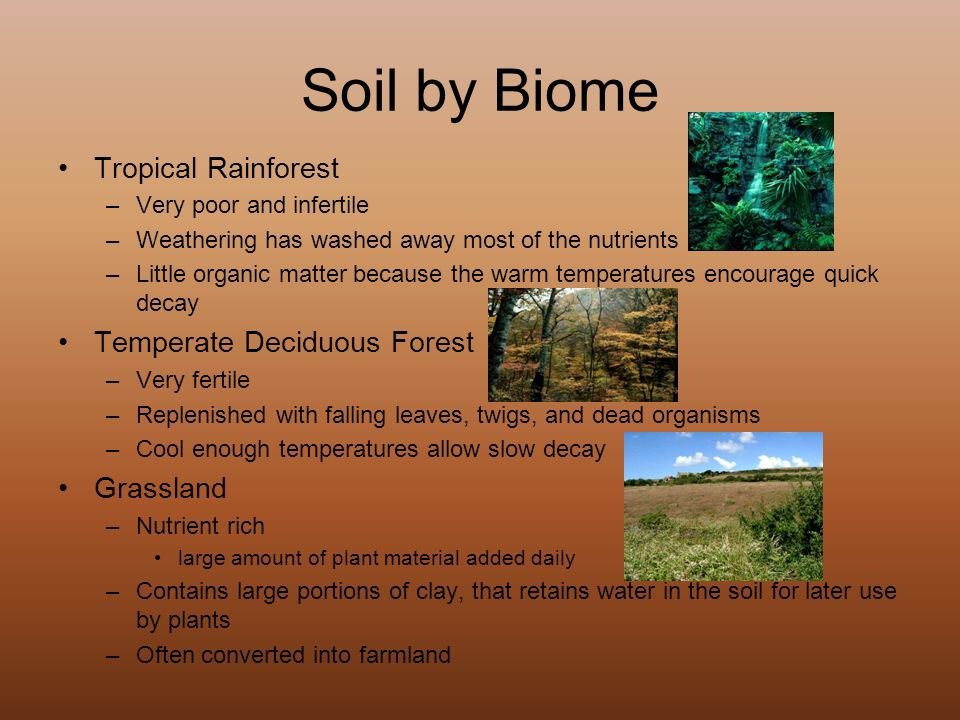 Characteristics degradation and conservation ppt video for What are soil characteristics