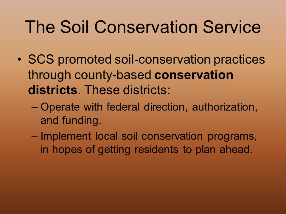 conservation essay