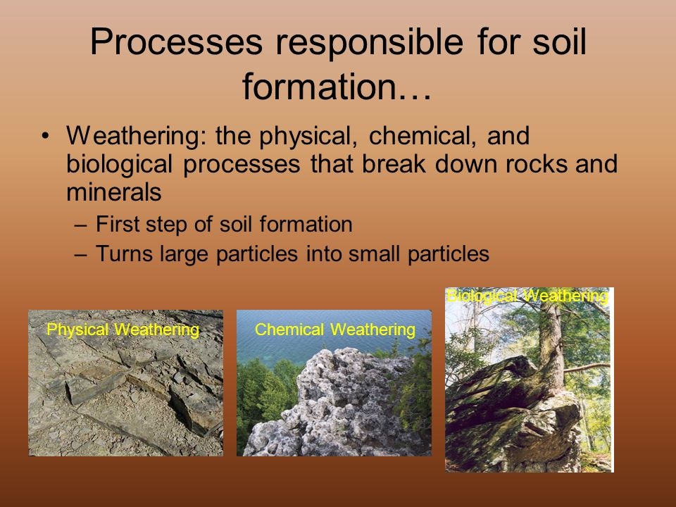 Characteristics degradation and conservation ppt video for Explain the formation of soil