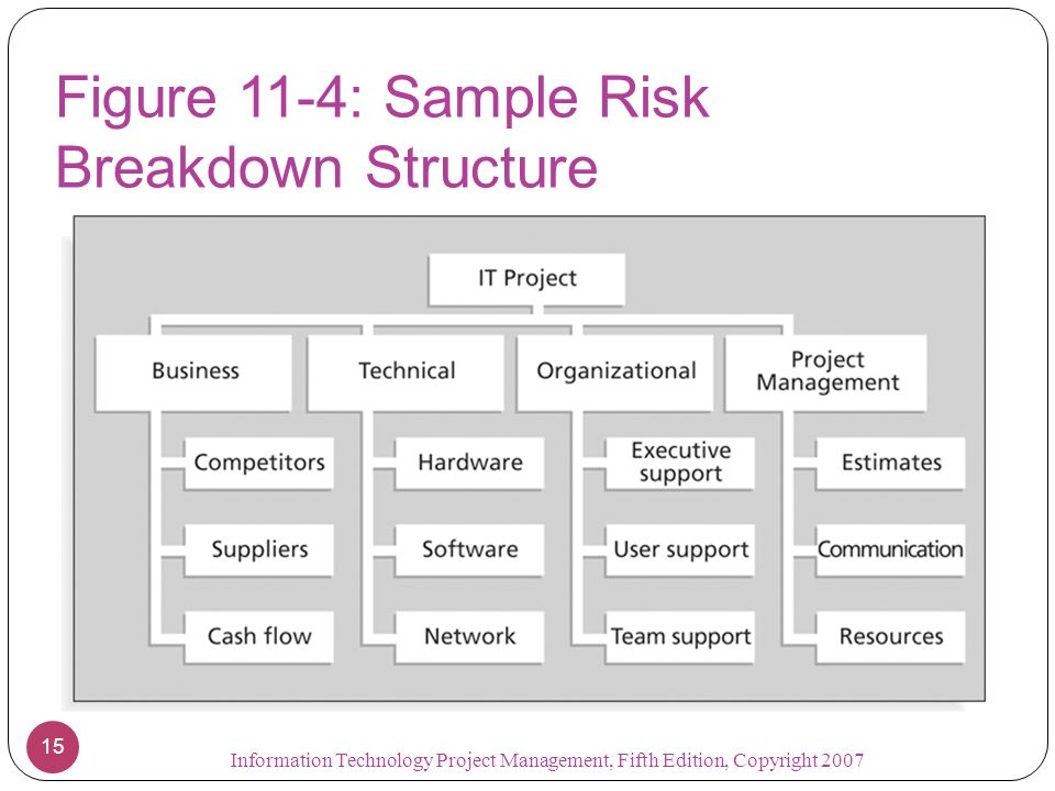 Figure 11-4: Sample Risk Breakdown Structure
