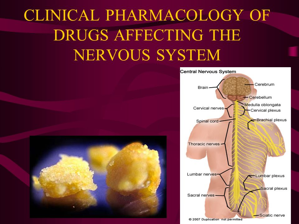 drugs the nervous system Introduction - drugs acting upon the central nervous system: the central nervous system directs the functions of all tissues of the body.