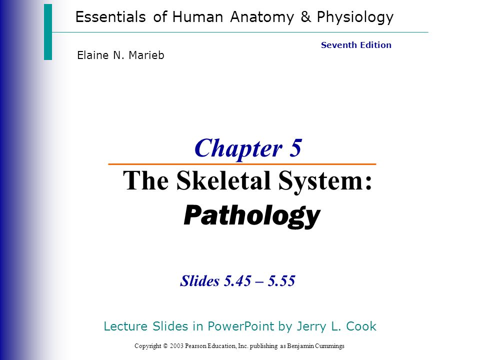 Chapter 5 The Skeletal System Pathology