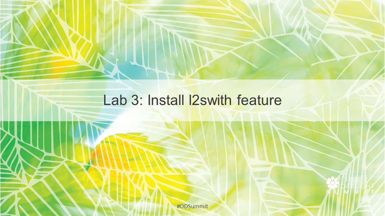 Lab 3: Install l2swith feature