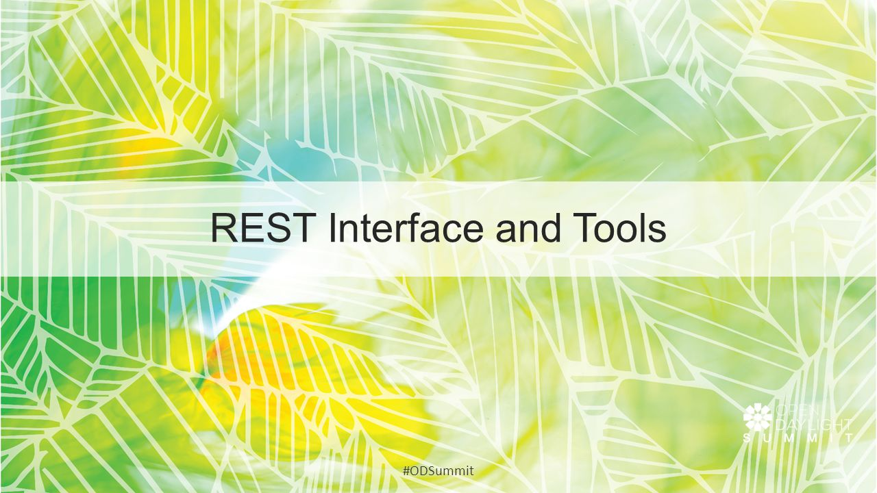 REST Interface and Tools